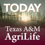 Texas crop, weather for July 22, 2014